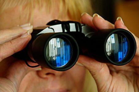 Responsibilities Of Investigators